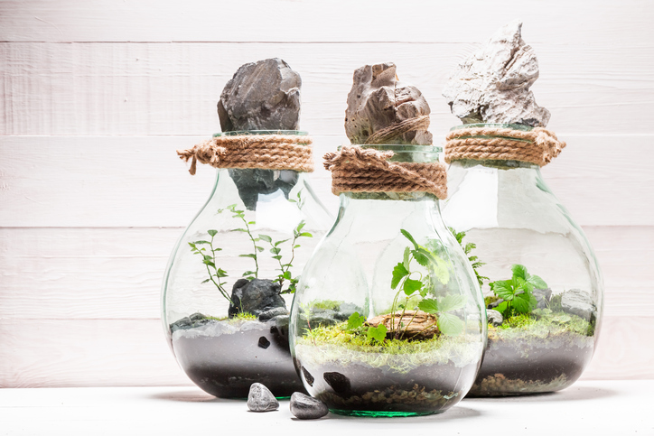 Build your own tabletop garden