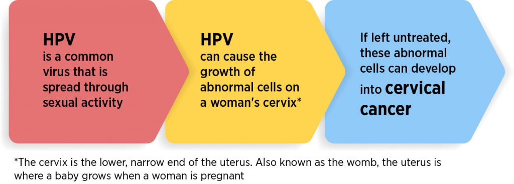 Human Papillomavirus Hpv And Cervical Cancer Thomson Medical